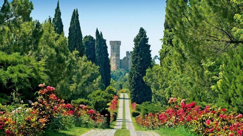 Rose fiorite lungo i viali del Parco Giardino Sigurtà a Valeggio sul Mincio